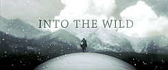 Into The Wild (unofficial)